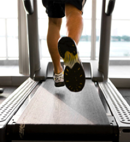 Maquinas Cardiovasculares para gimnasio - Mejores marcas